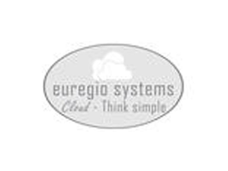 Logo Euregio Systems neu